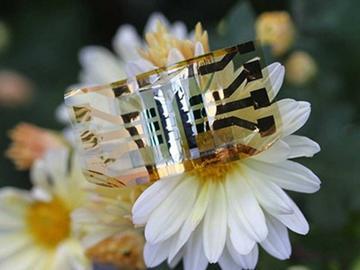 可彻底改变可穿戴技术,比人头发厚度薄十倍的新型超轻型柔性太阳能电池问世
