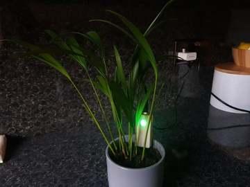 基于 Arduino 的盆栽植物土壤湿度传感器