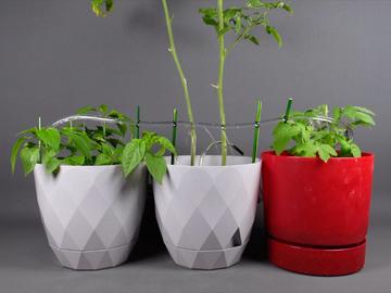 基于Arduino的DIY自动植物浇水系统