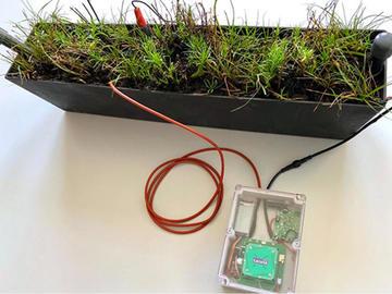 国外宣布首个植物供电的IoT传感器成功将数据传送到太空