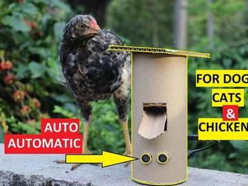 基于Arduino 的自动食物分配器