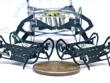 HAMR-JR:迄今打造的最小、最快的行走机器人之一