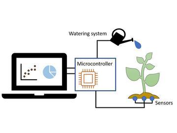 比较用于智能灌溉系统的土壤湿度传感器