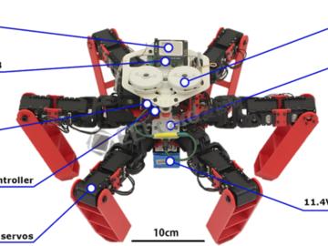 致敬蚂蚁!六足机器人可利用偏振太阳光实现精确导航