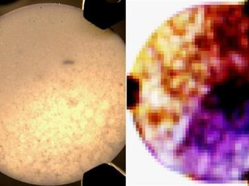 颠覆传统医疗应用,基于太赫兹成像的微型激光器